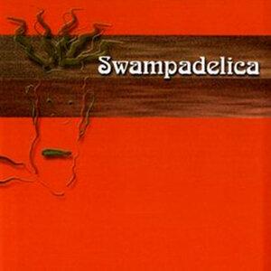 Swampadelica 歌手頭像
