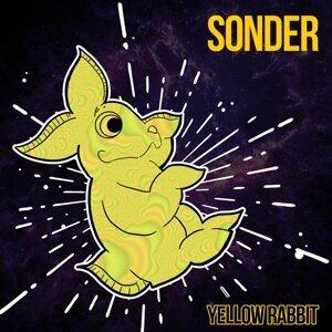 Sonder 歌手頭像
