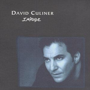 David Culiner