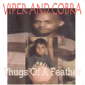 Viper and Cobra 歌手頭像