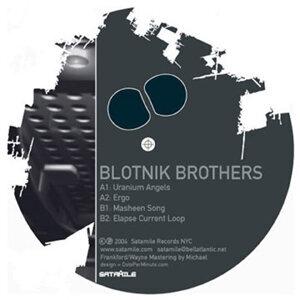 Blotnik Brothers 歌手頭像