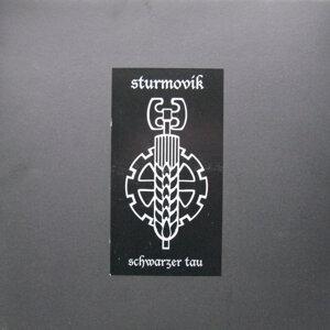 Sturmovik 歌手頭像