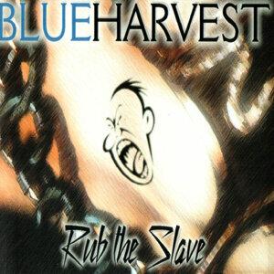 Blue Harvest 歌手頭像