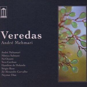 André Mehmari 歌手頭像
