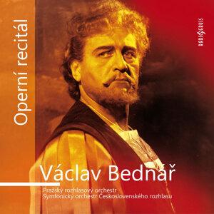 Václav Bednář 歌手頭像