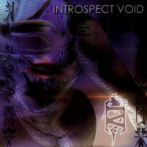 Introspect Void 歌手頭像