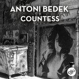 Antoni Bedek