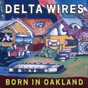 Delta Wires 歌手頭像