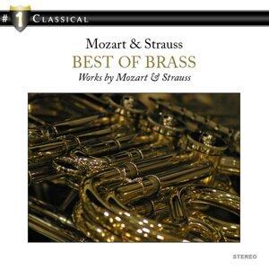 The English Brass Ensemble 歌手頭像