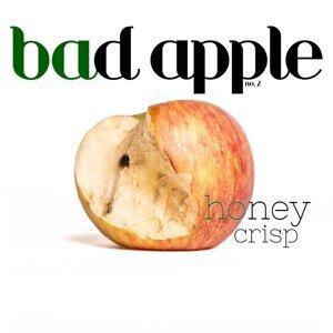 Bad Apple 歌手頭像