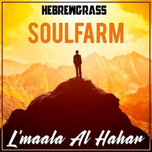 Soulfarm 歌手頭像