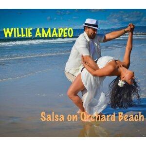 Willie Amadeo 歌手頭像