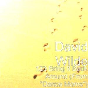 David Wilde 歌手頭像