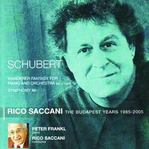 Rico Saccani 歌手頭像