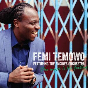 Femi Temowo 歌手頭像