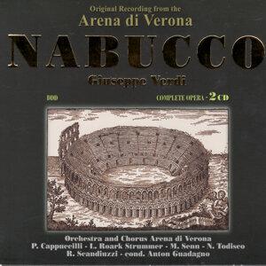 Arena Di Verona 歌手頭像