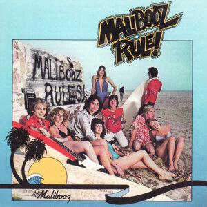 The Malibooz 歌手頭像