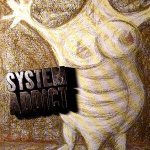 System Addict 歌手頭像