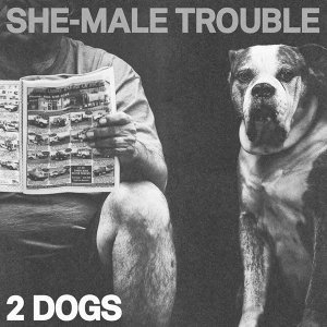 She-Male Trouble 歌手頭像