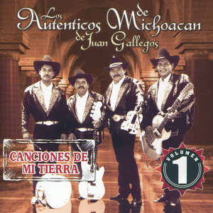Los Autenticos de Michoacan 歌手頭像