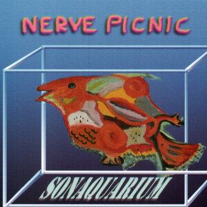Nerve Picnic 歌手頭像