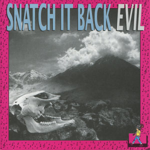 Snatch It Back 歌手頭像