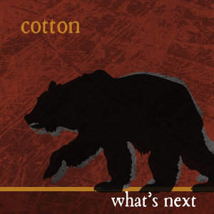 Cotton 歌手頭像