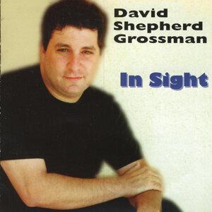 David Grossman 歌手頭像