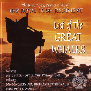 The Band, Bugles, Pipes & Drums of The Royal Irish Regiment 歌手頭像