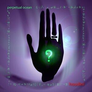 Perpetual Ocean 歌手頭像
