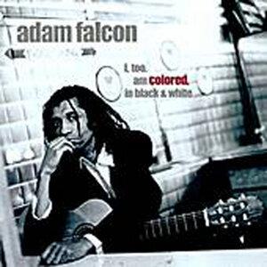 Adam Falcon 歌手頭像