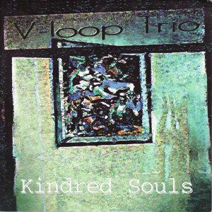 The V-Loop Trio 歌手頭像