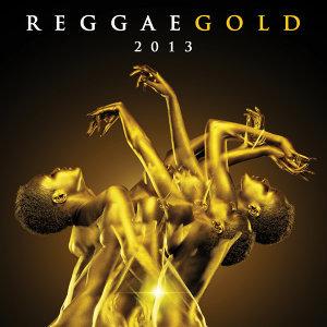Reggae Gold 2013 歌手頭像