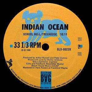 Indian Ocean 歌手頭像