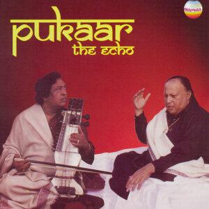 Ustad Nusrat Fateh Ali Khan / Ustad Sultan Khan 歌手頭像