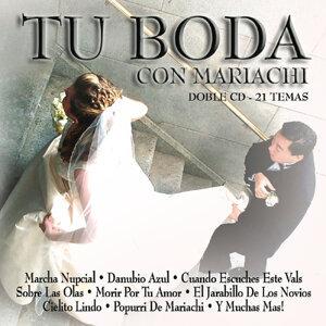Mariachi Nuevo Tecalitlan 歌手頭像