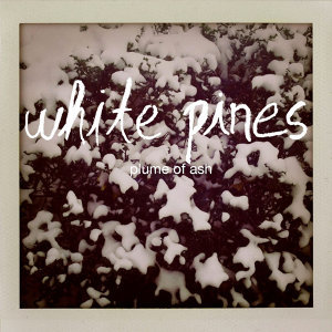 White Pines 歌手頭像