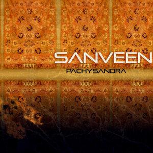 Sanveen 歌手頭像