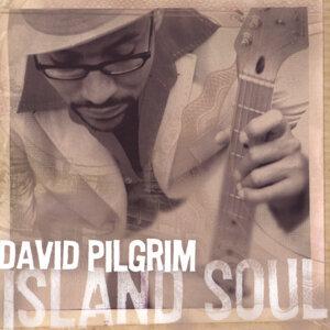 David Pilgrim 歌手頭像
