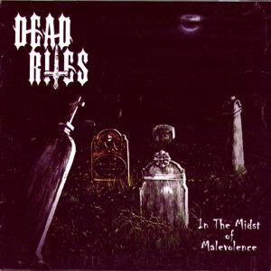 Dead Rites 歌手頭像