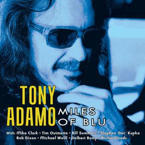 Tony Adamo 歌手頭像
