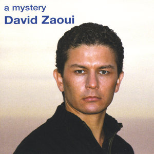 David Zaoui 歌手頭像