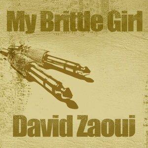 David Zaoui