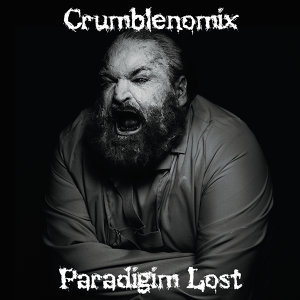 paradigm lost 歌手頭像