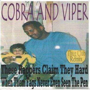 Cobra And Viper 歌手頭像