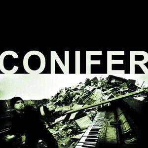 Conifer 歌手頭像