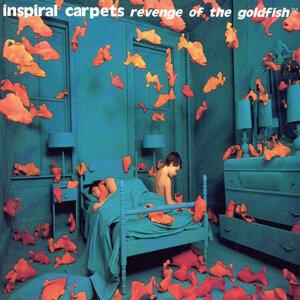 Inspiral Carpets (神奇魔毯樂團) 歌手頭像