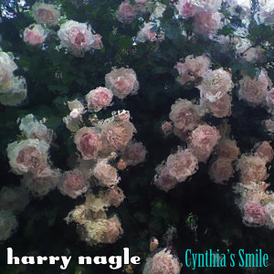 Harry Nagle