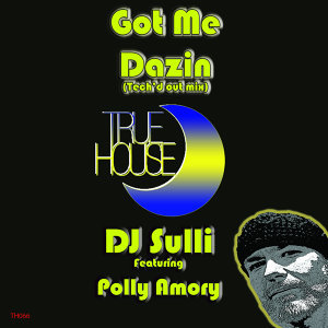 DJ Sulli 歌手頭像
