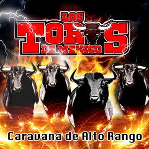 Los Toros de México 歌手頭像